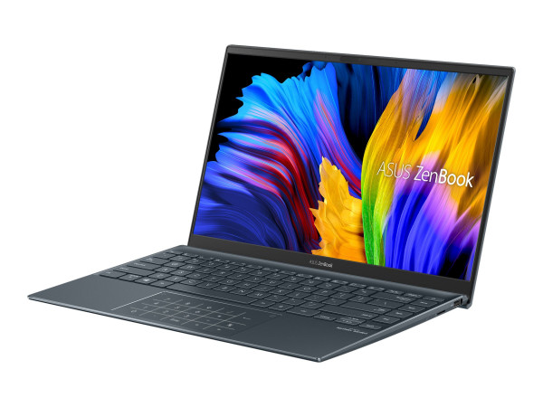 ASUS ZenBook 14 UM425UA-KI170R