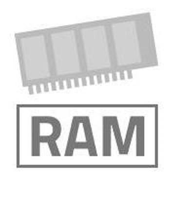 Ricoh 256MB Speichererweiterung